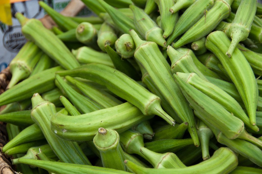 Fresh Seasonal Okra Available from Late Spring