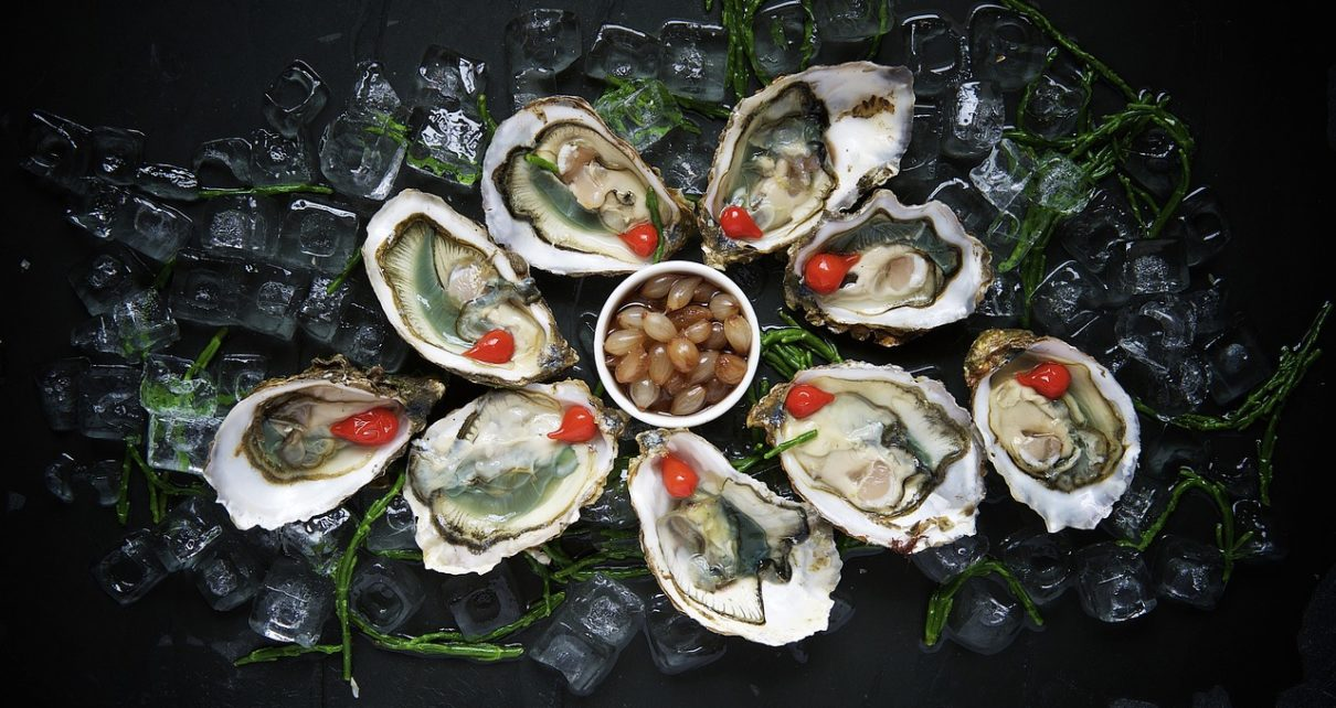 Oysters - Everything You Need To Know